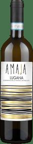 Bollina 'Amaia' Lugana 2019
