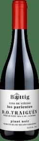 Baettig Vino de Viñedo Los Parientes Pinot Noir Traiguén 2019