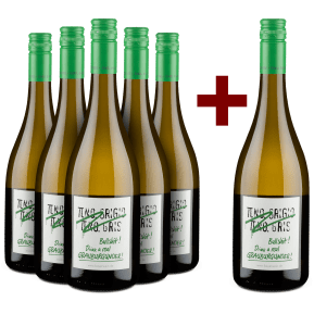5+1-Set Emil Bauer 'Pinot Grigio, Pinot Gris, Bullshit' Drink real Grauburgunder 2019