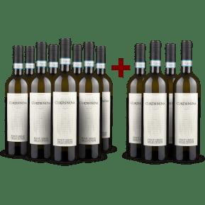 8+4-Set Bollina Curtis Nova Pinot Grigio delle Venezie 2018