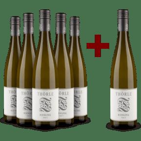 5+1-Set Thörle Riesling trocken 'Fass 9' 2019