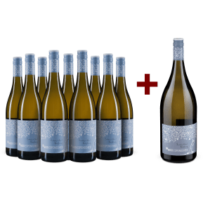 9er+Gratis-Magnum Set Nico Espenschied Riesling trocken 'Buddy & Soil' 2019
