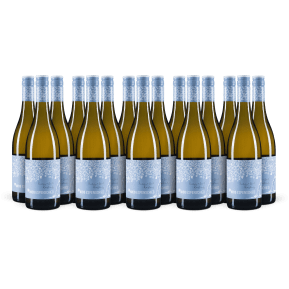 15er-Set Nico Espenschied Riesling trocken 'Buddy & Soil' 2019