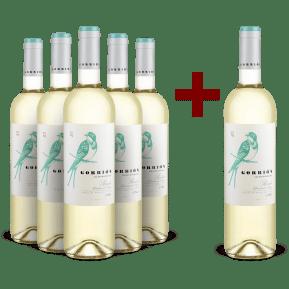 '6 halen, 5 betalen' pakket Álvarez y Díez Sauvignon Blanc 'Gorrión' Rueda 2019