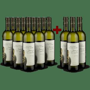 '12 halen, 9 betalen' pakket Cantine Leonardo da Vinci Pinot Grigio 'Dama con l'Ermellino' 2019
