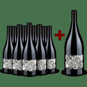 Offre 9 bouteilles Flavabom Shiraz 'Vine Dried' South Australia 2019  + 1 magnum offert