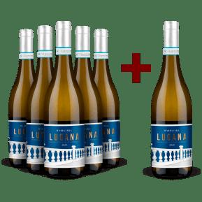 Offre 5+1 Cantina Delibori Lugana 'Marigiara' 2020