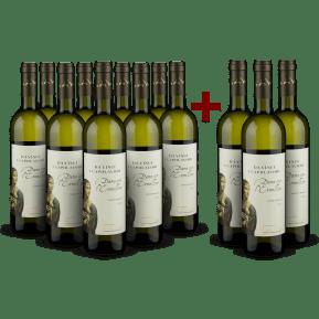 9+3-Set Cantine Leonardo da Vinci Pinot Grigio 'Dama con l'Ermellino' 2020