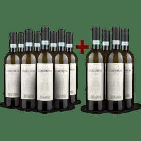 8+4-Set Bollina Curtis Nova Pinot Grigio delle Venezie 2020