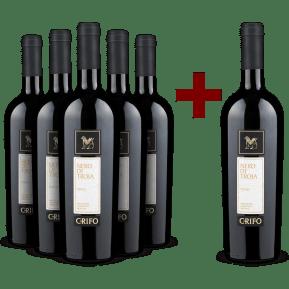 '6 halen, 5 betalen' pakket Nero di Troia 'Grifo' 2019