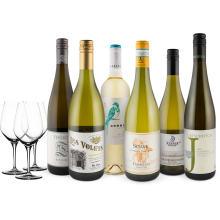 Wine in Black 'Bestseller-Weißwein-6er-Set' + 3 Spiegelau-Gläser