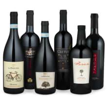 Wine in Black '95+La Bollina-Set'