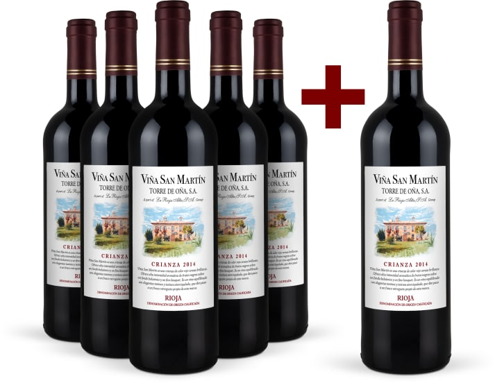 Offre 5+1 Viña San Martín Rioja Crianza 2014