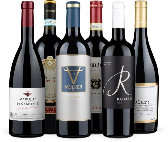 Wine in Black 'Mundus Vini Best of Show Rotwein'-Set
