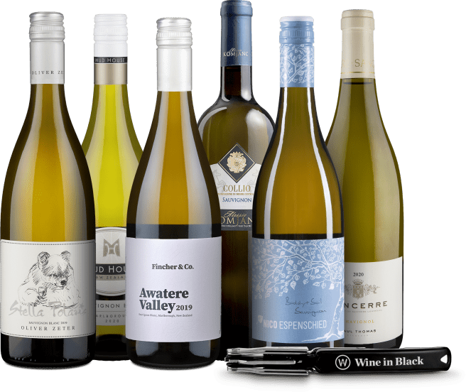 Wine in Black 'Sauvignon Blanc Lover'-Set + Gratis-Kellnermesser