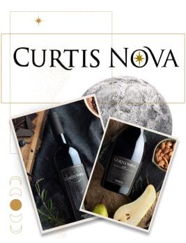 Curtis Nova
