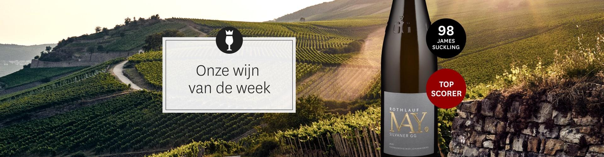 Onze actuele wijn van de week