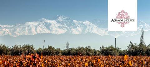 Wijngoed van de maand - Bodega Achával Ferrer
