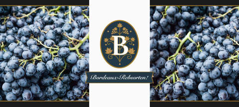 Bordeaux Superstars