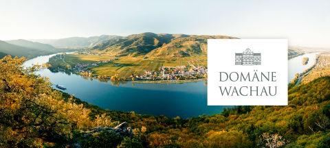 Winzer des Monats - Domäne Wachau