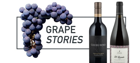 Grape Stories