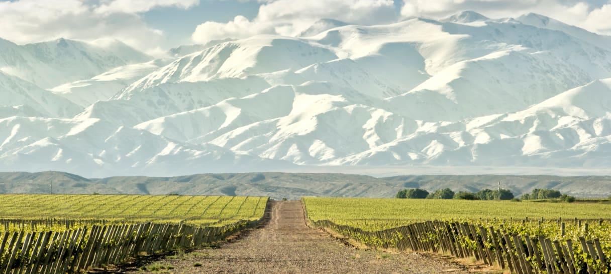 Wein aus Argentinië