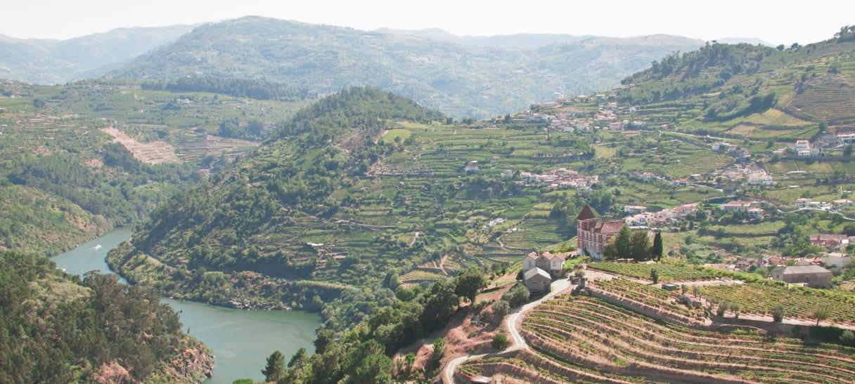 Wein aus Douro, Portugal