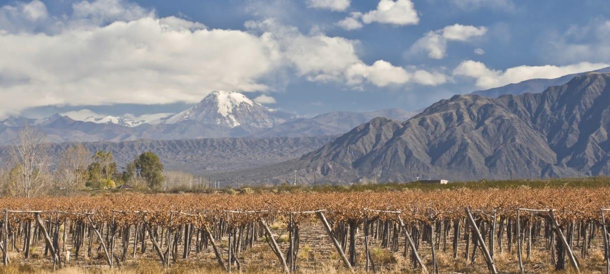 Wein aus Aconcagua, Chile