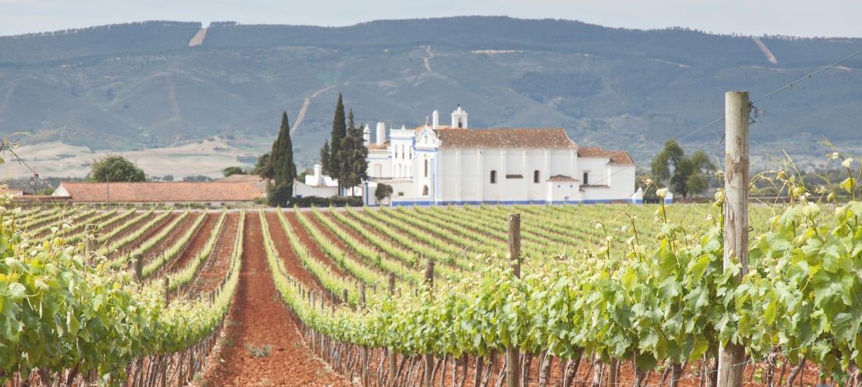 Wein aus Alentejo, Portugal