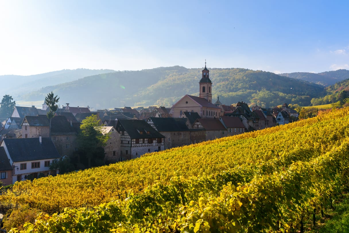 Wein aus Elsass, Frankreich