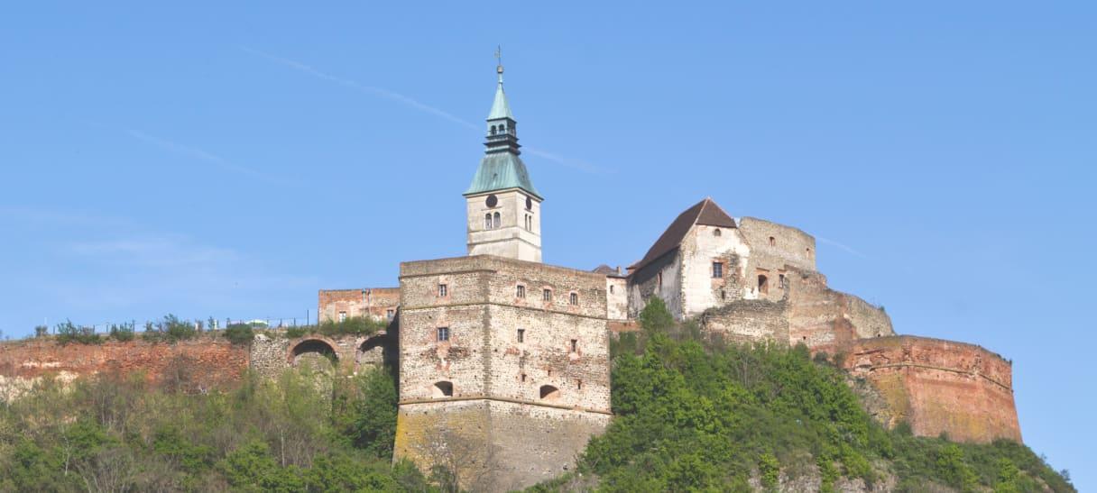 Wein aus Burgenland, Österreich