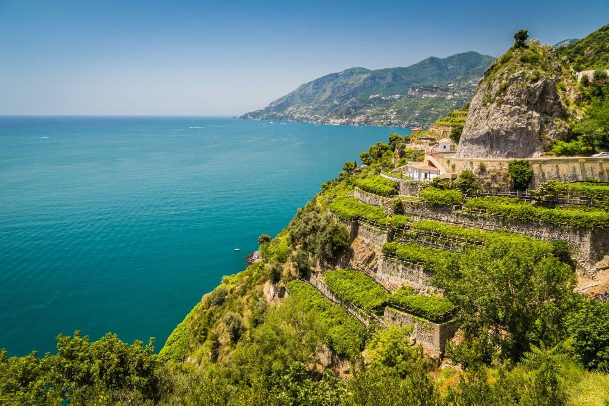 Wein aus Campanie, Italie