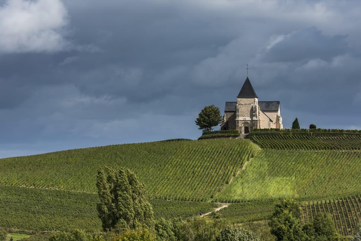Wein aus Champagne, Frankreich