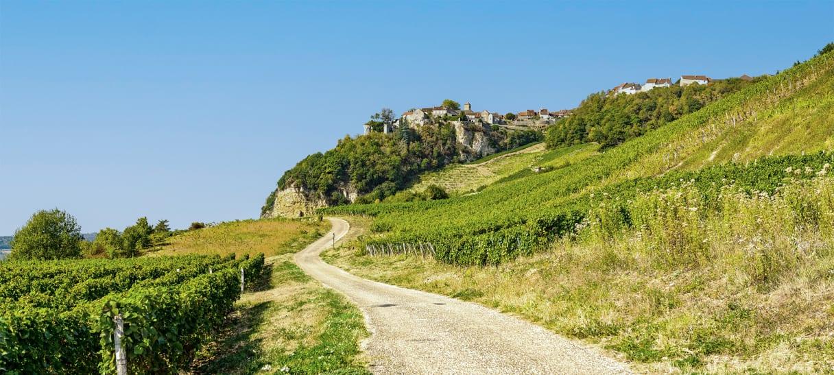 Wein aus Jura, Frankreich
