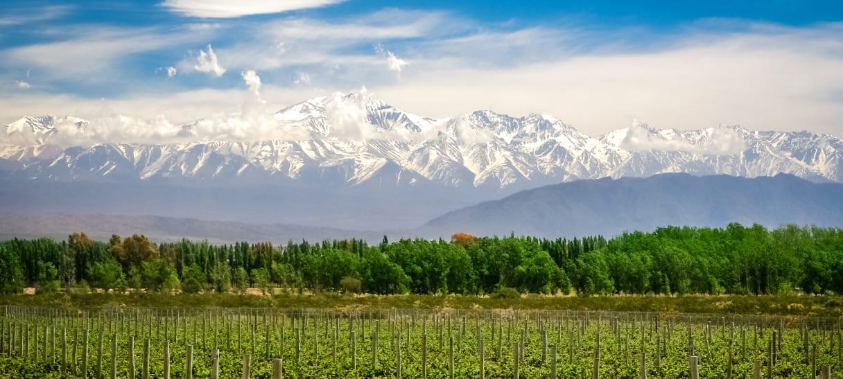 Wein aus Mendoza, Armenien