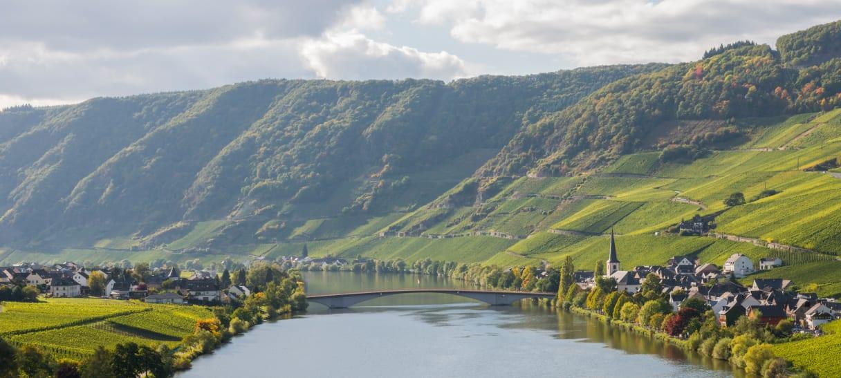 Wein aus Moselle, Allemagne