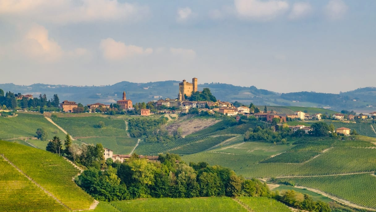 Wein aus Piémont, Italie