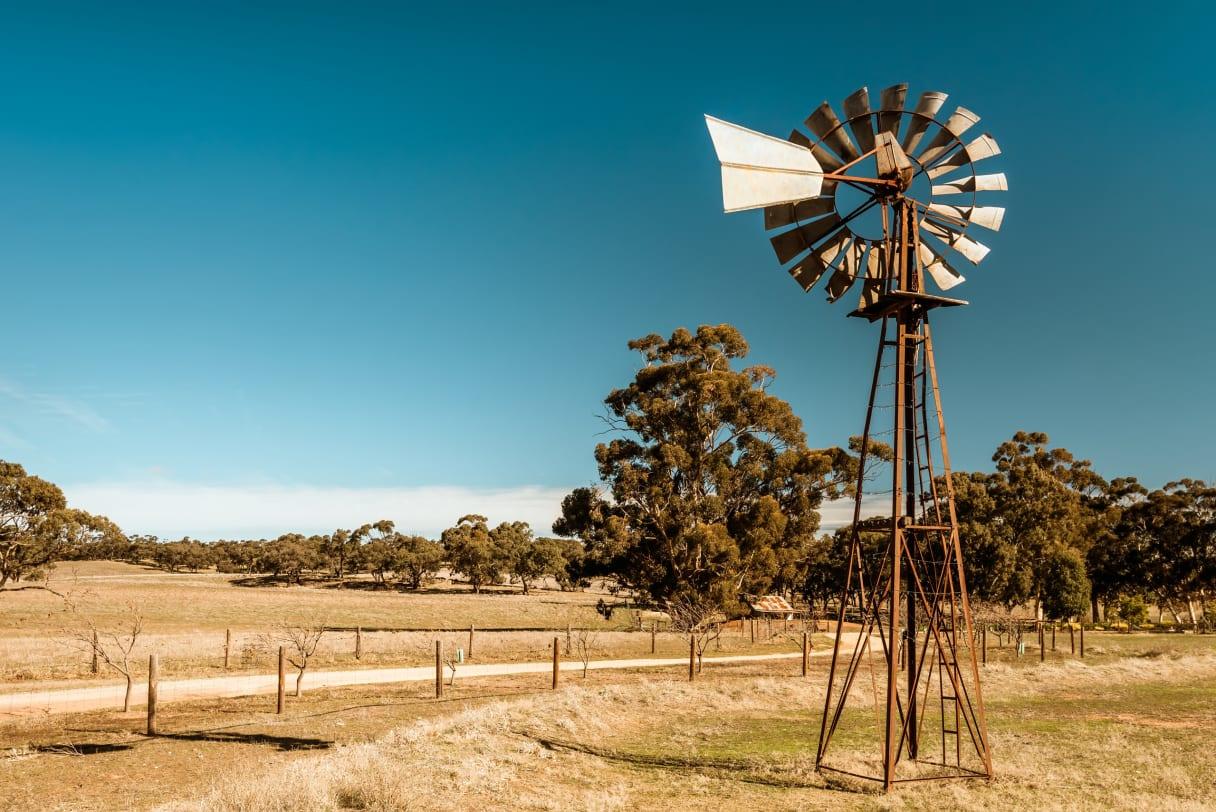 Wein aus South Australia, Australien