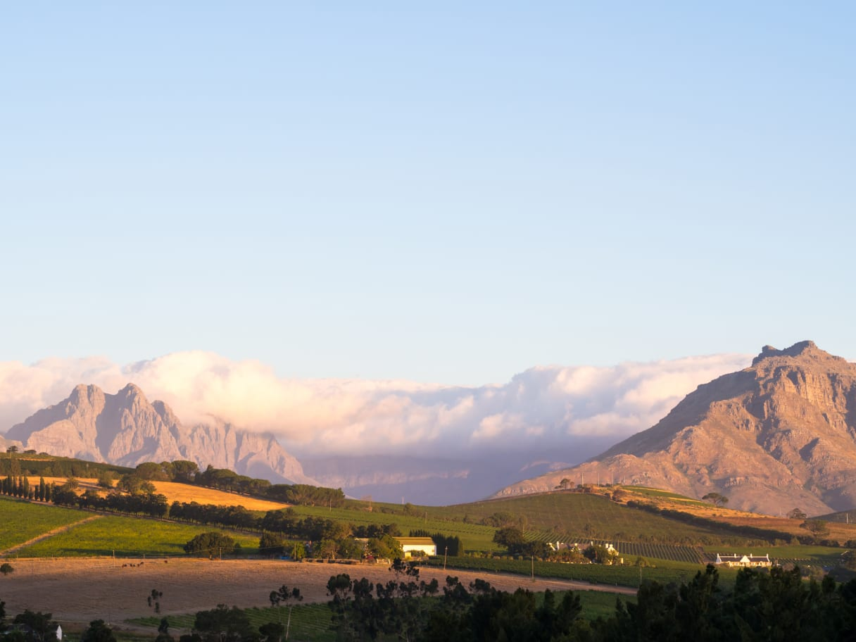 Wein aus Swartland, Zuid-Afrika