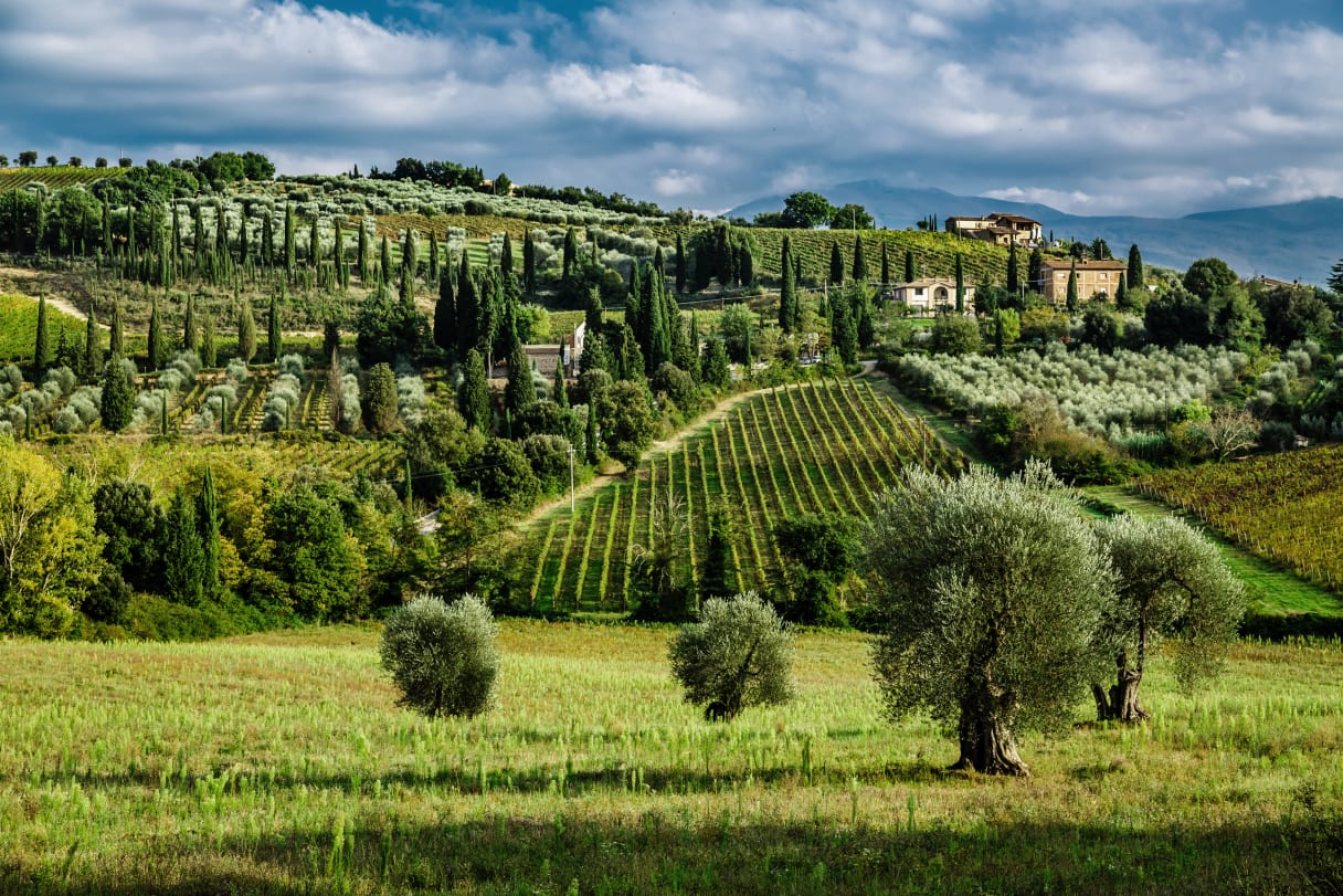 Wein aus Toscane, Italië