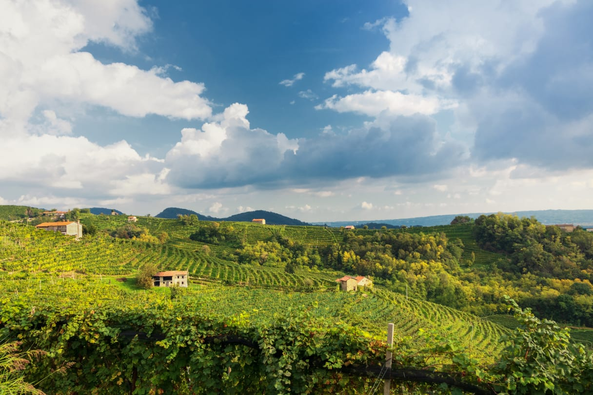 Wein aus Vénétie, Italie