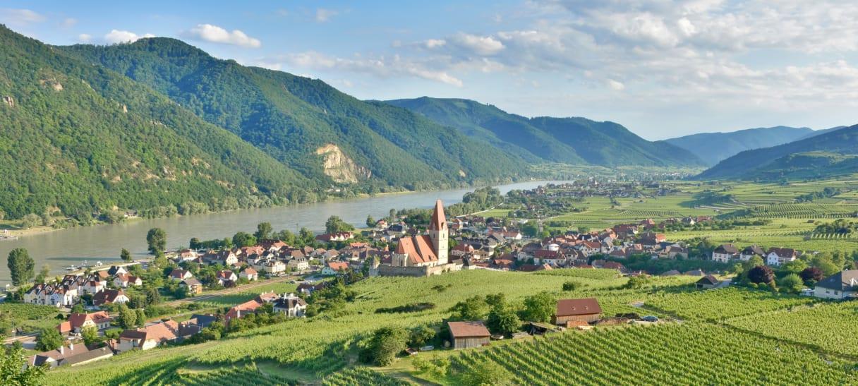 Wein aus Wachau, Österreich