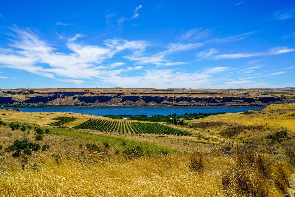 Wein aus Washington State, Etats-Unis