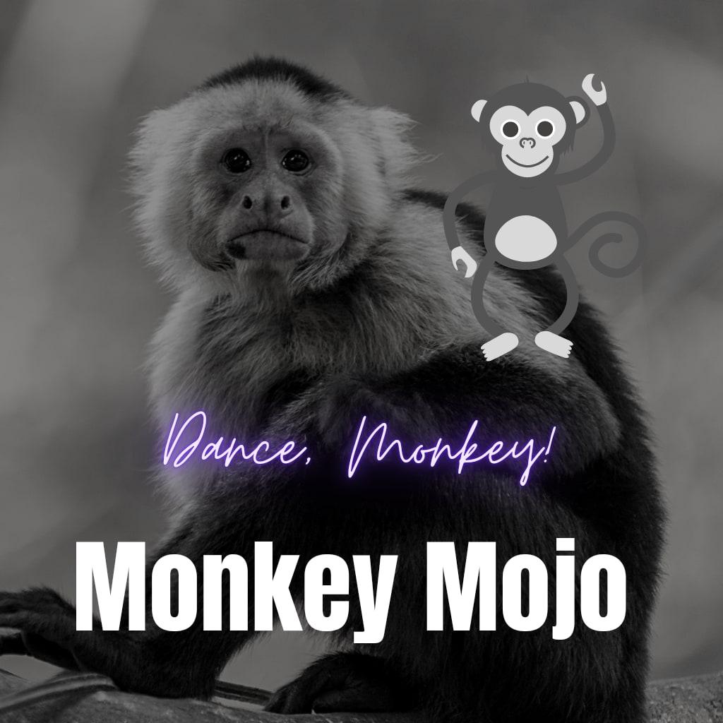 Monkey Mojo