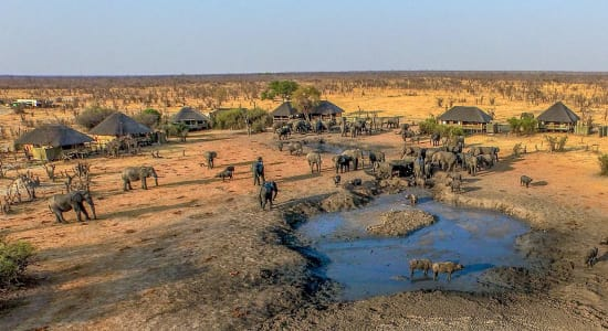 Ariel view of elephants gathered around water hole at safari camp in Zimbabwe