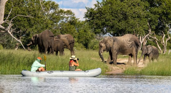zimbabwe imvelo elephant canoe