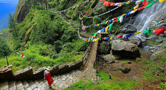 bhutan trek forest path prayer flags