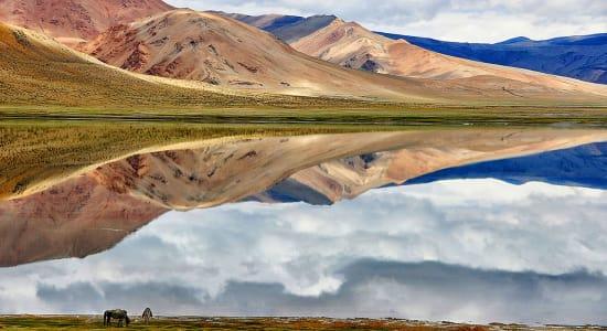 himalaya ladakh changthang plateau lake