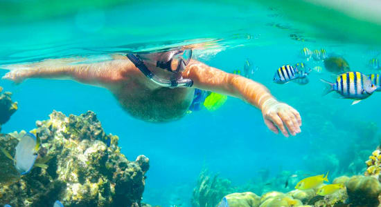 1 slide philippines man snorkeling coral reef colorful fish pano