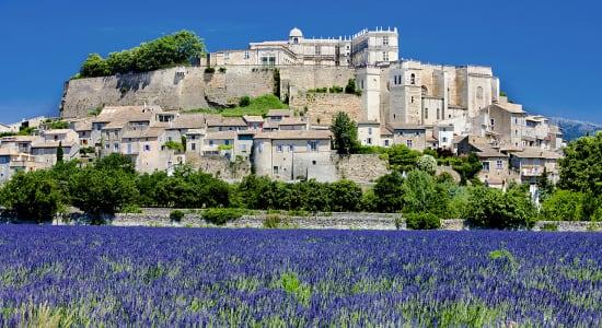 grignan france lavender